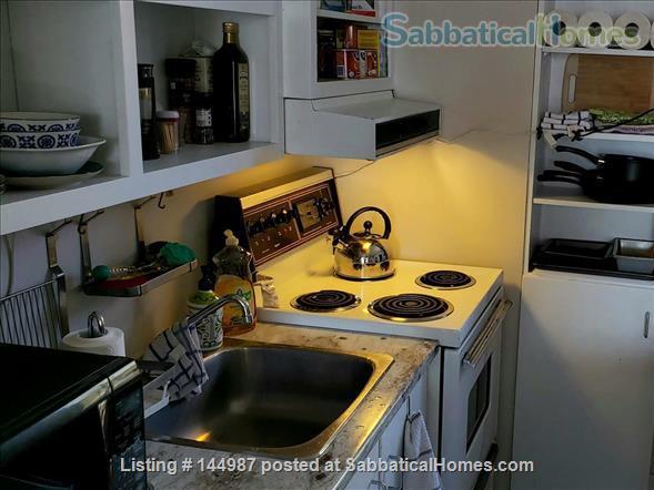 Bright 1 bedroom, hardwood floors Home Rental in Kingston, Ontario, Canada 7
