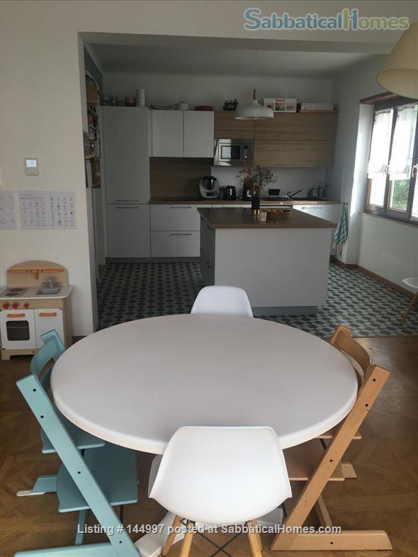 BEAUTIFUL 4/5 ROOM APARTMENT - ORANGERIE QUARTER - STRASBOURG Home Rental in Strasbourg, Grand Est, France 0