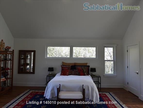 East Austin Furnished, Light-filled Garage Apartment Home Rental in Austin, Texas, United States 5