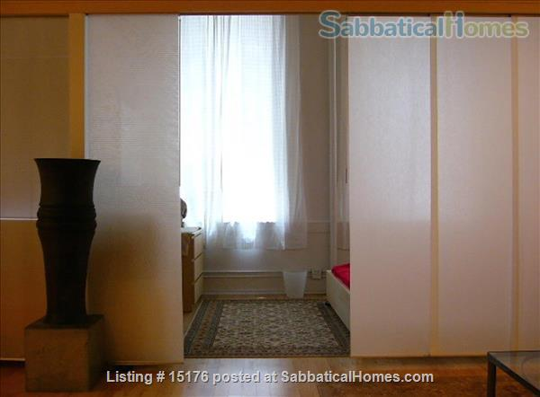 SUPER CUTE/NEW YORK FURNISHED LOFT APTS/TRIBECA   Available Short term) Home Rental in New York, New York, United States 0