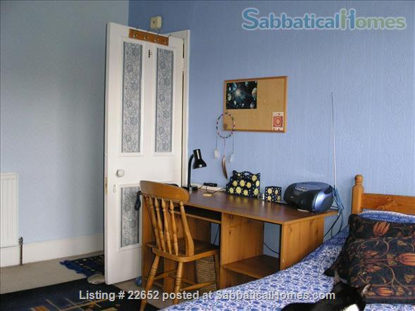 Fabulous rooms in beautiful Edwardian house in Muswell Hill.  (Near underground) Home Rental in Muswell Hill, England, United Kingdom 2