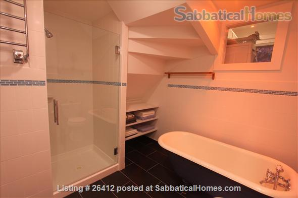 Sunny 2BR furnished apartment in walking distance to Harvard/MIT/ B.U. Home Rental in Cambridge, Massachusetts, United States 3