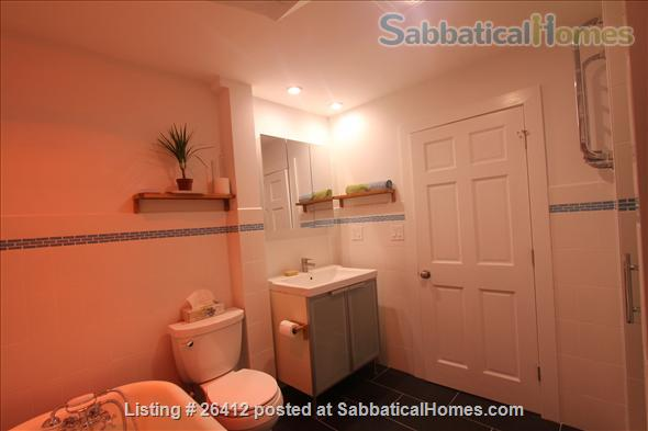 Sunny 2BR furnished apartment in walking distance to Harvard/MIT/ B.U. Home Rental in Cambridge, Massachusetts, United States 4