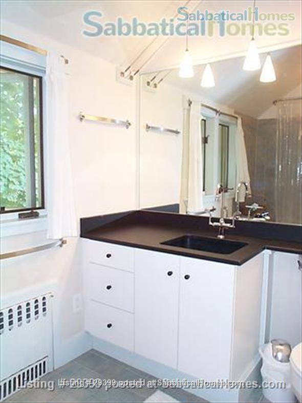 The Treehouse: Architect-designed stylish furnished 1-BR+study nr Harvard Home Rental in Cambridge, Massachusetts, United States 4