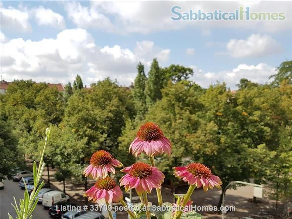 Sunny and comfortable 100sqm flat in artists quarter Friedrichshain Home Exchange in Berlin, Berlin, Germany 1