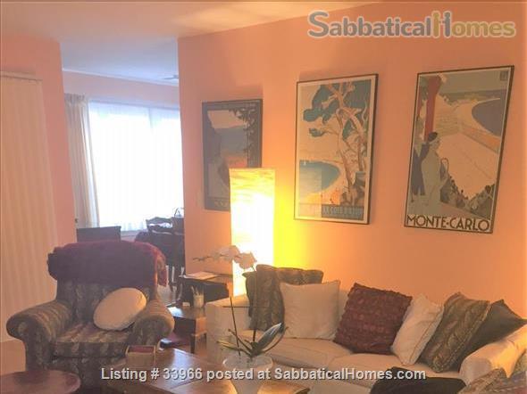 Cambridge apartment Share near Harvard MIT Tufts MGH BU Emerson in Boston Cambridge, MA Home Rental in Cambridge, Massachusetts, United States 0
