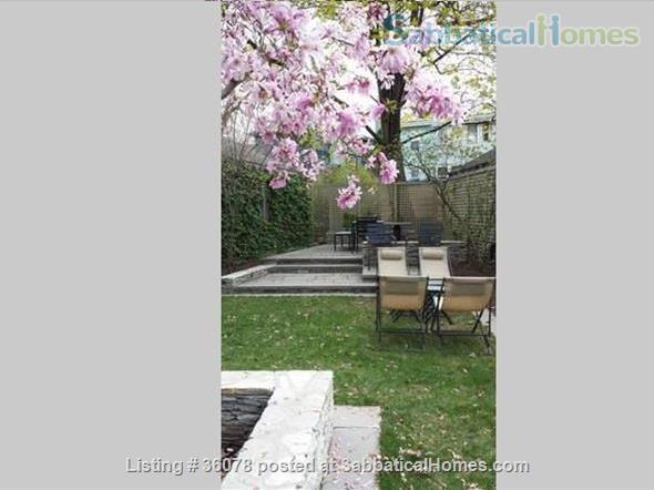 Sunsplashed Serenity: elegant, furnished unit, walking distance to Harvard Home Rental in Cambridge, Massachusetts, United States 0