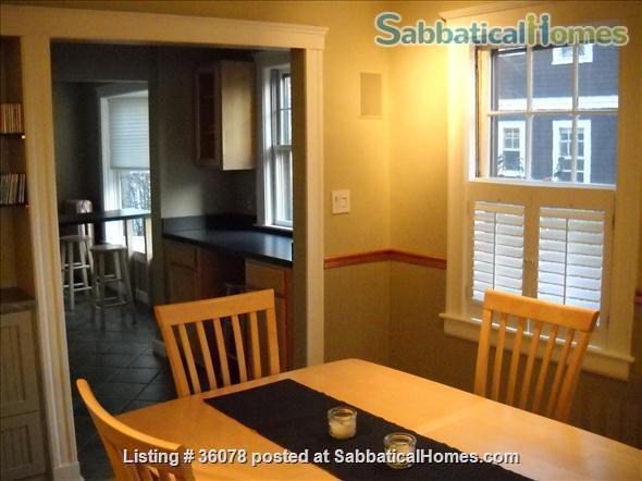 Sunsplashed Serenity: elegant, furnished unit, walking distance to Harvard Home Rental in Cambridge, Massachusetts, United States 1