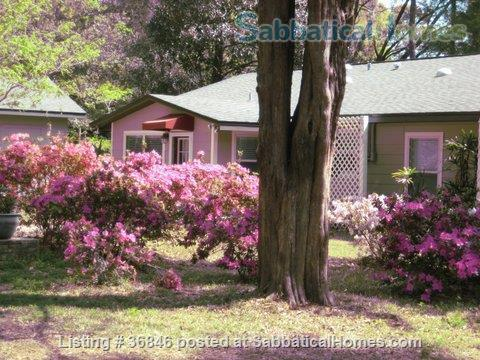 Furnished Home, close in NW, Gainesville Home Rental in Gainesville, Florida, United States 0