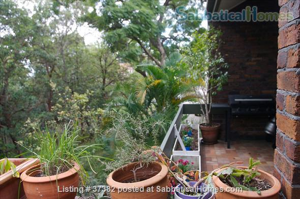 Fully Furnished Townhouse in St Lucia, Brisbane Home Rental in St Lucia, QLD, Australia 2