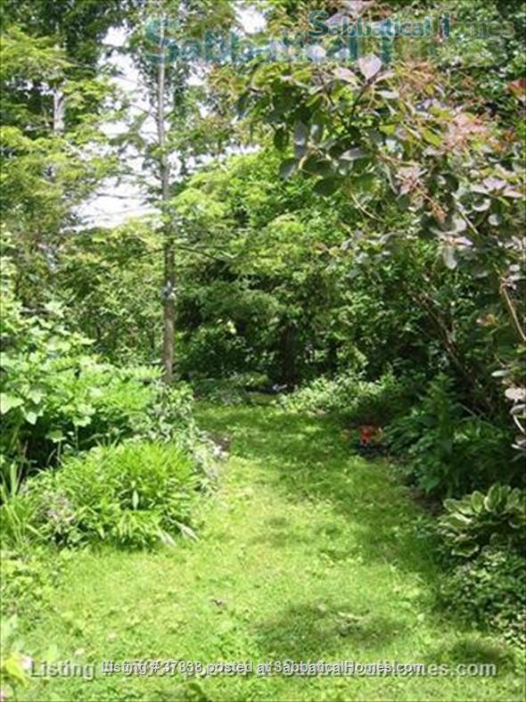 New Price, Central, Child Friendly, Enclosed Garden  Home Rental in Toronto, Ontario, Canada 4