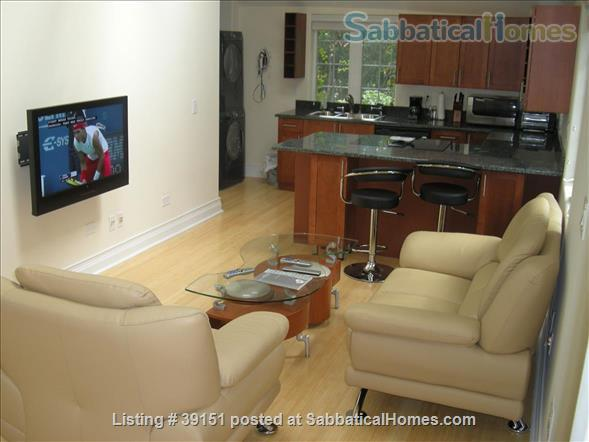 Luxury 2 Bedroom furnished coach house in Hyde Park within University of Chicago campus Home Rental in Chicago, Illinois, United States 1