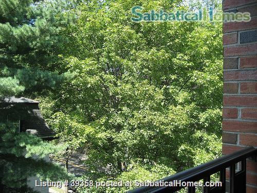 Quiet, Top Floor, Fully-Furnished, One Bedroom Apartment Home Rental in Cambridge, Massachusetts, United States 3