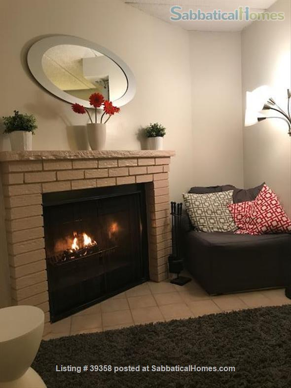 Quiet, Top Floor, Fully-Furnished, One Bedroom Apartment Home Rental in Cambridge, Massachusetts, United States 4