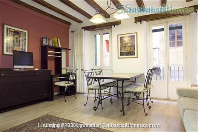Plaza Catalunya -- Gothic Quarter - just 6  min to beach - 2 bedroom apt   Home Rental in Barcelona, Catalunya, Spain 0