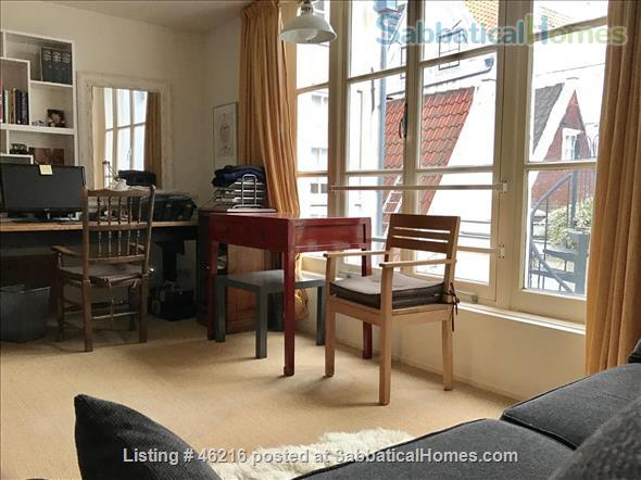 lovely downtown amsterdam appartment  with 1-2 bedrooms Home Rental in Amsterdam, NH, Netherlands 8