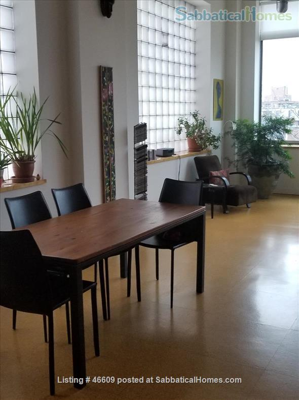 Quiet, light-filled, Kensington Market loft   Home Rental in Toronto, Ontario, Canada 1