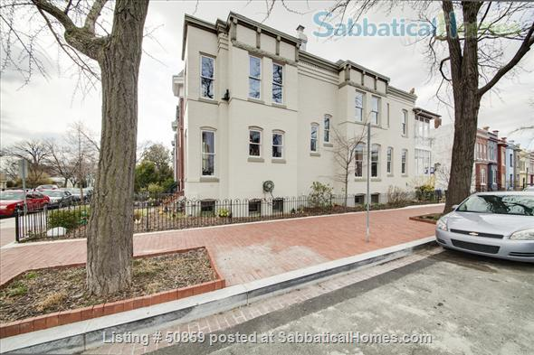 Fully furnished 1 BD apartment on Capitol Hill in Washington, D.C.; $2450/month, utilities included. Home Rental in Washington, District of Columbia, United States 0