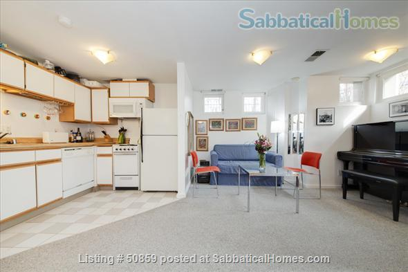 Fully furnished 1 BD apartment on Capitol Hill in Washington, D.C.; $2450/month, utilities included. Home Rental in Washington, District of Columbia, United States 2
