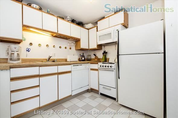 Fully furnished 1 BD apartment on Capitol Hill in Washington, D.C.; $2450/month, utilities included. Home Rental in Washington, District of Columbia, United States 6
