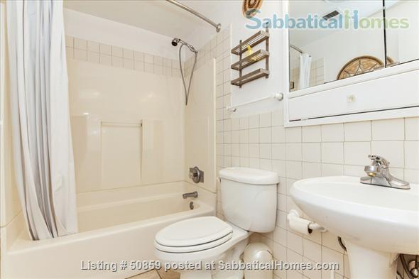 Fully furnished 1 BD apartment on Capitol Hill in Washington, D.C.; $2450/month, utilities included. Home Rental in Washington, District of Columbia, United States 7