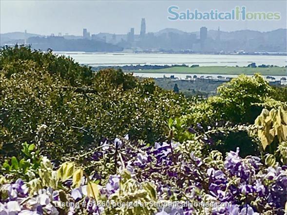 Indoor/Outdoor Living with San Francisco View; 3 bedrooms/2.5 baths - Berkeley, CA Home Rental in Kensington, California, United States 9