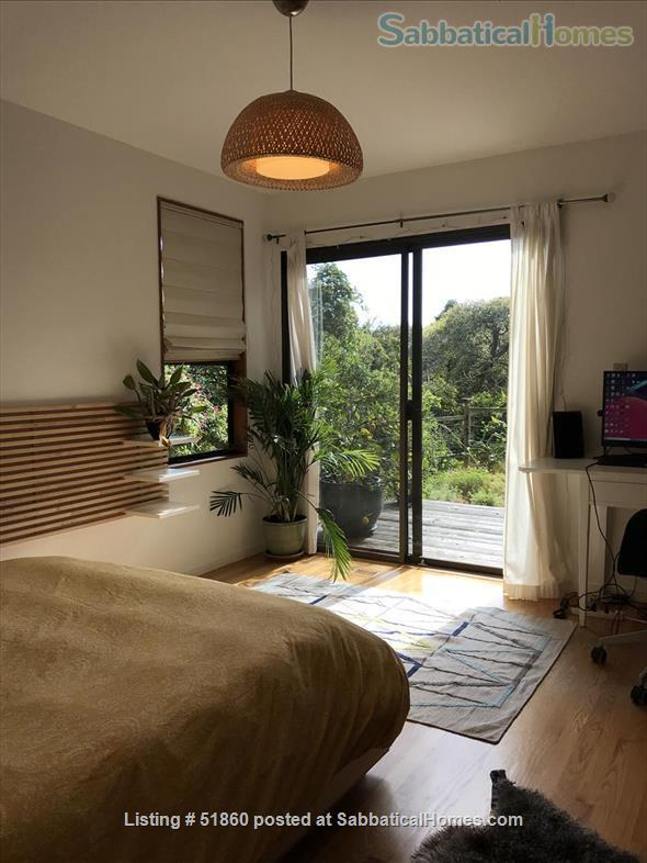 Indoor/Outdoor Living with San Francisco View; 3 bedrooms/2.5 baths - Berkeley, CA Home Rental in Kensington, California, United States 4