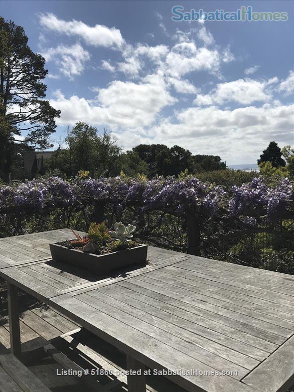 Indoor/Outdoor Living with San Francisco View; 3 bedrooms/2.5 baths - Berkeley, CA Home Rental in Kensington, California, United States 7
