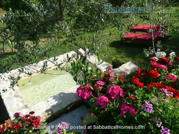 Rare: a cottage for two on the edge of spectacular medieval Tuscan village Home Rental in Cetona 2
