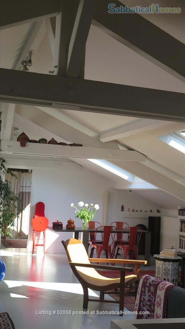 beautiful loft Home Rental in Paris 8