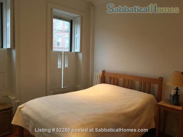 Beautiful sunny apartment in Cobble Hill/Carroll Gardens Brooklyn Home Rental in Kings County, New York, United States 3