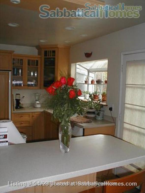 Sunny and Cozy 2-bedroom in Central Berkeley Home Rental in Berkeley, California, United States 0