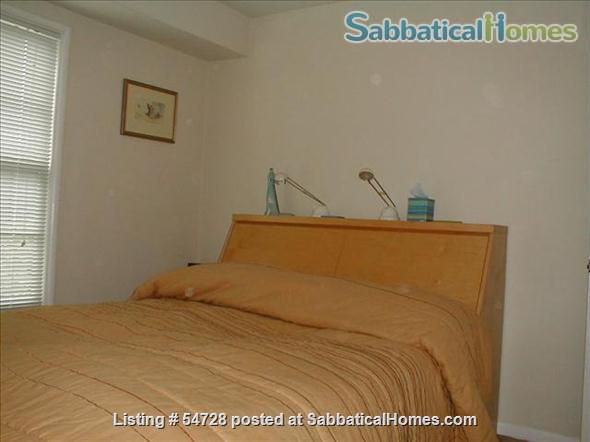 Sunny and Cozy 2-bedroom in Central Berkeley Home Rental in Berkeley, California, United States 4