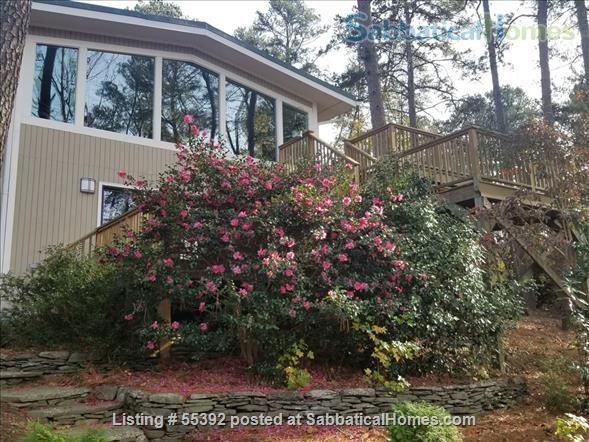 Lakeside living in central Chapel Hill Home Rental in Chapel Hill, North Carolina, United States 9