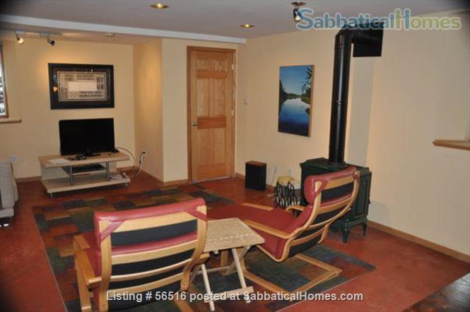 1 Bedroom furnished apartment in duplex close to downtown (Minneapolis and St Paul) and universities Home Rental in Saint Paul, Minnesota, United States 3