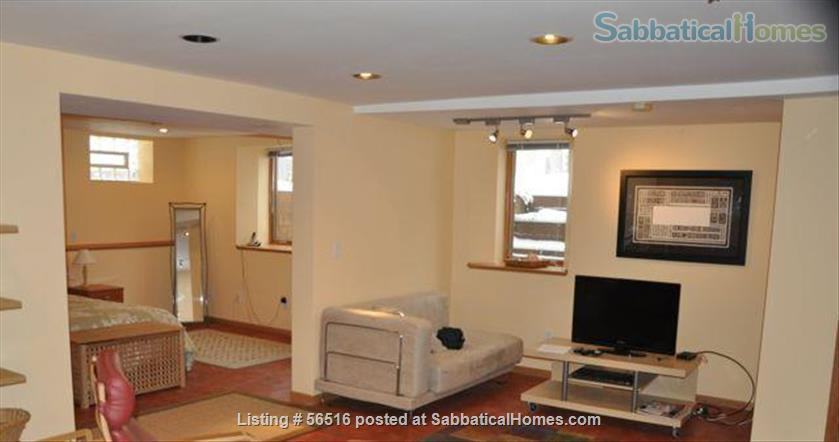1 Bedroom furnished apartment in duplex close to downtown (Minneapolis and St Paul) and universities Home Rental in St Paul, Minnesota, United States 4