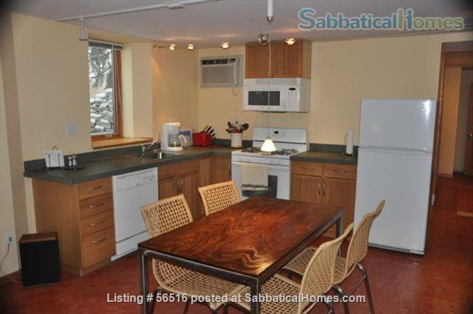 1 Bedroom furnished apartment in duplex close to downtown (Minneapolis and St Paul) and universities Home Rental in St Paul, Minnesota, United States 6