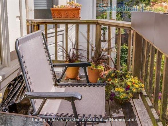 FABULOUS LOCATION & VALUE, SAN FRANCISCO: 2 BR +Den, Light-filled SF Flat Home Rental in San Francisco, California, United States 9