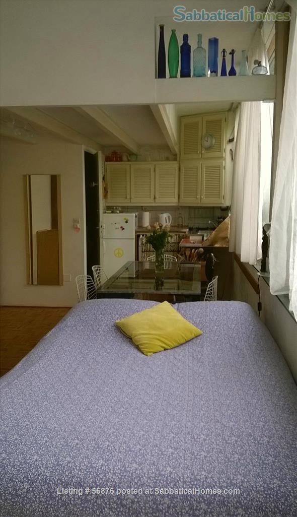 Sunny, ultra-calm Oberkampf loft-style studio   Home Exchange in Paris, IDF, France 4