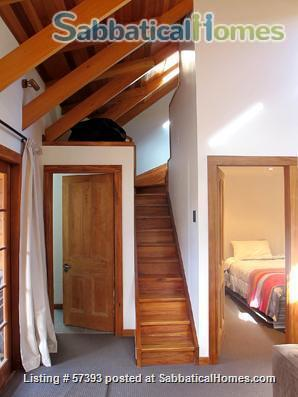 Cosy cottage, quiet, comfortable, central to city and university Home Rental in Wellington, Wellington, New Zealand 2