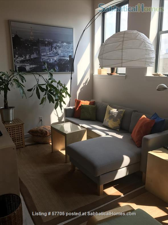1-BR Loft. Great lighting. Near MIT, Harvard, Boston. Fully furnished. Home Rental in Cambridge, Massachusetts, United States 0