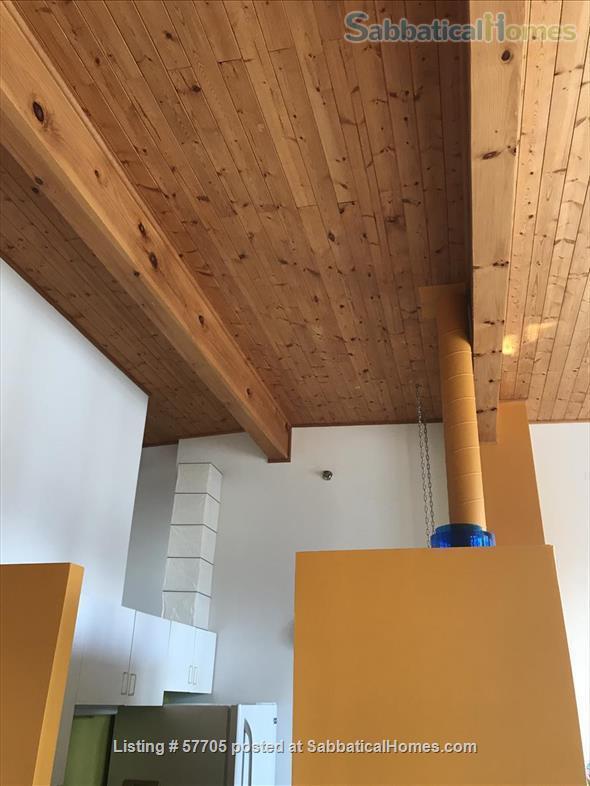 1-BR Loft. Great lighting. Near MIT, Harvard, Boston. Fully furnished. Home Rental in Cambridge, Massachusetts, United States 2