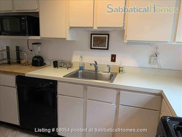 Bright townhouse close to Cornell campus, cafes, and shops Home Rental in Ithaca, New York, United States 5