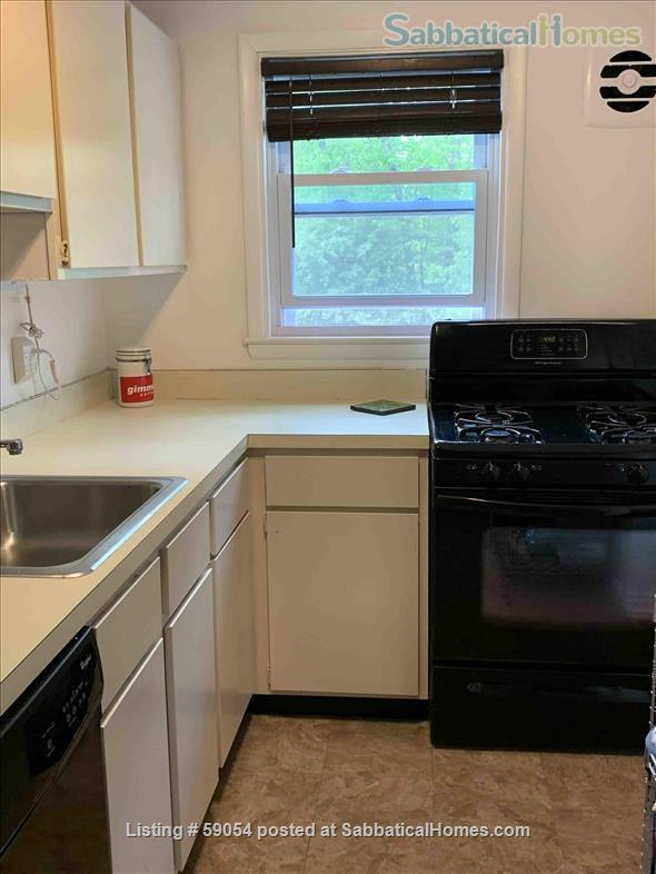 Bright townhouse close to Cornell campus, cafes, and shops Home Rental in Ithaca, New York, United States 6