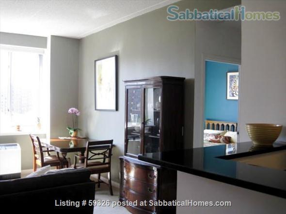 Zen 2BD/2BA Condo in Luxury Building w/Gym, 2 Rooftop Terraces, Harlem NYC Home Rental in New York, New York, United States 5