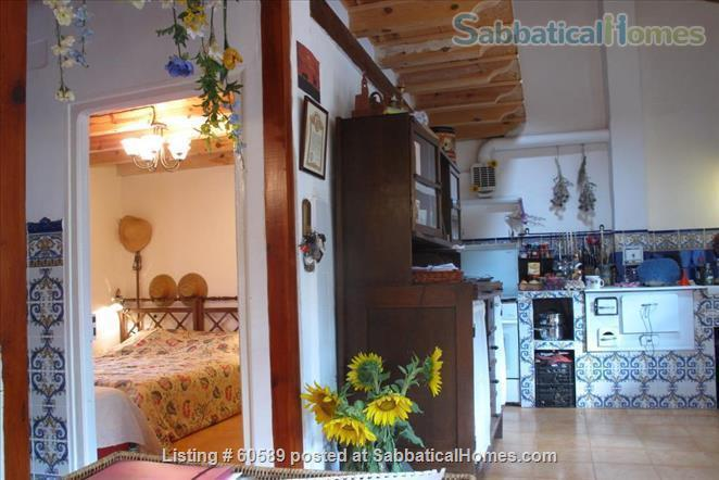 Cosy retreat  in the heart of Spain:  Cottage + studio  for rent in historic Almazán, province of Soria. Home Rental in Almazán, CL, Spain 2