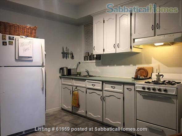 Spacious, quiet 1 BR apt with huge deck in Annex (Bloor Bathurst) House Home Rental in Toronto, Ontario, Canada 4