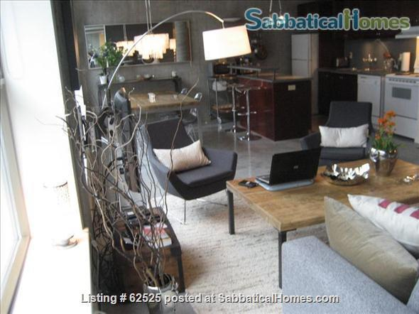 Furnished industrial Loft in Downtown Toronto, Fashion District Home Rental in Toronto 8