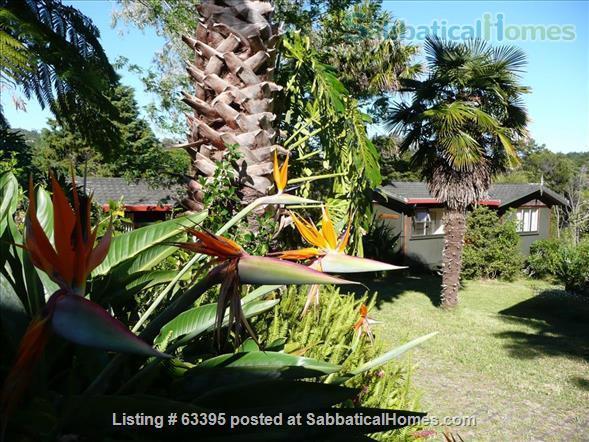 Cosy small villas in Eco and Writers Retreat in Kerikeri, Bay of Islands Home Rental in Kerikeri, Northland, New Zealand 7
