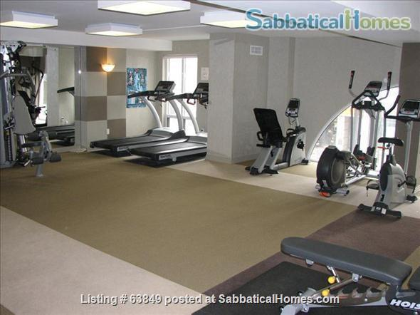 All - Inclusive, Furnished, Downtown Central Location in Toronto - Walk to Universities, Hospitals Home Rental in Toronto, Ontario, Canada 2